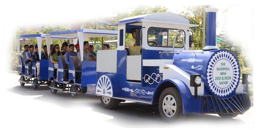 Electric Mini Train for Sale - Trackless train for roads